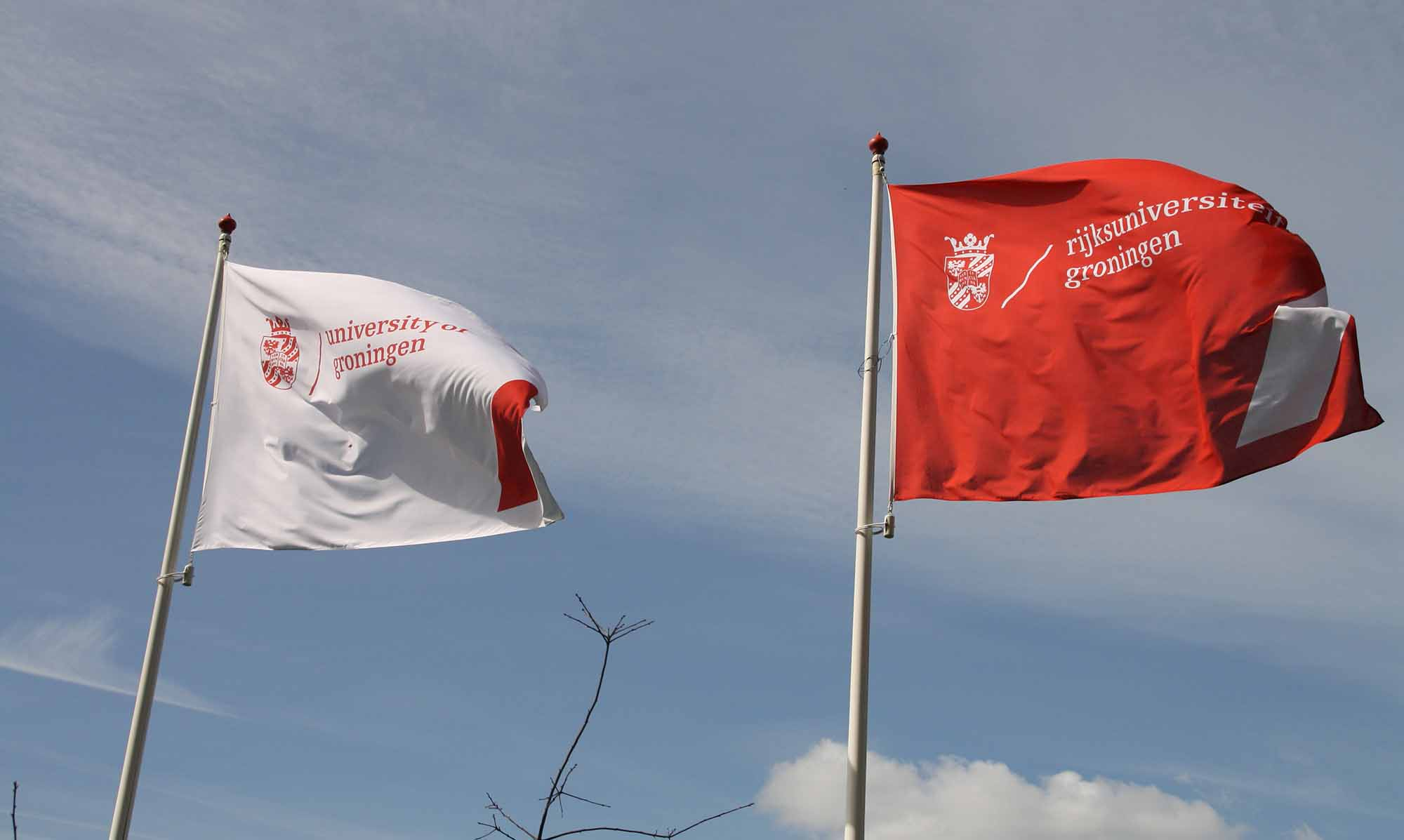 Vlaggen Rijksuniversiteit Groningen